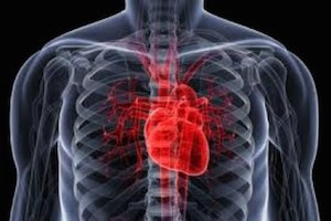 Heart Attack Immunocal helps